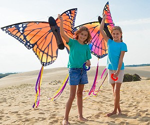 Butterfly Kites