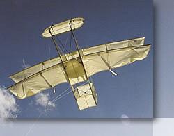 Airplane Kites | Cobra Kites